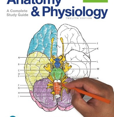 Pdf Pearson Anatomy And Physiology Coloring Workbook A Complete