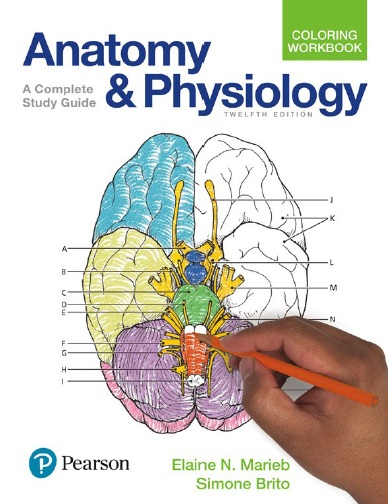 PDF - Pearson - Anatomy and Physiology Coloring Workbook: A Complete ...